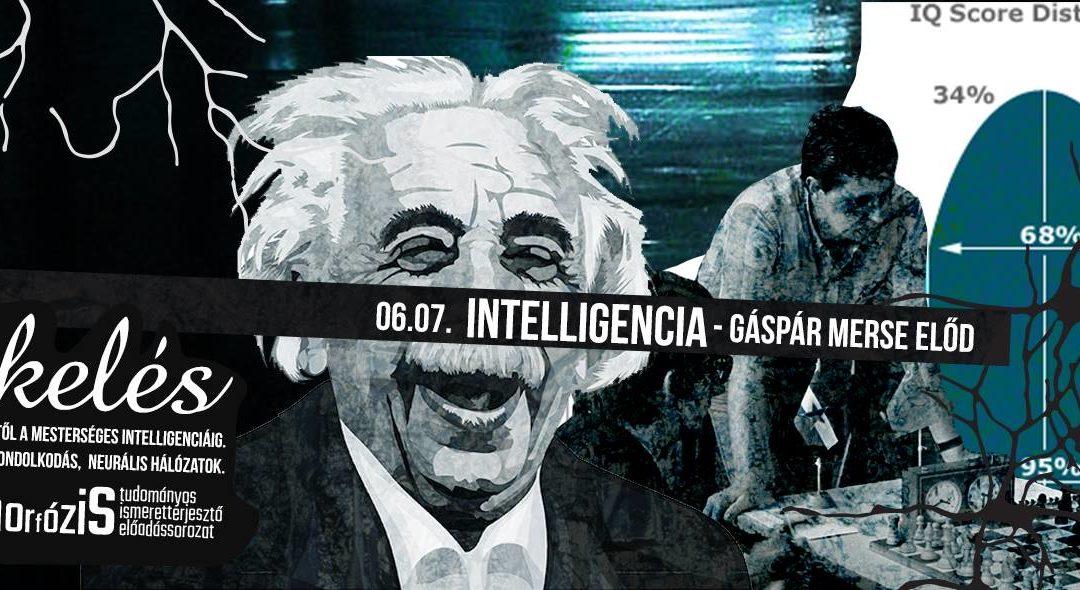 Intelligencia, kreativitás – Gáspár Merse Előd